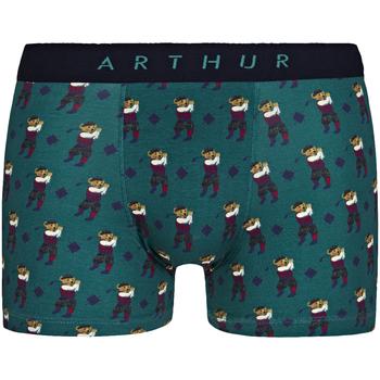 Sous-vêtements Homme Boxers Arthur Boxer coton Vert sapin