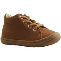 Chaussures Garçon Boots Bellamy POPI CAMEL