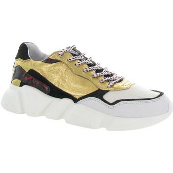Chaussures Femme Baskets basses Serafini OREGON 03 Beige