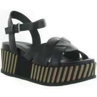 Chaussures Femme Sandales et Nu-pieds Elvio Zanon 4503 Noir