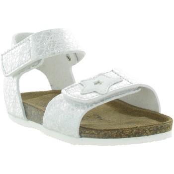 Chaussures Fille Nouveautés de ce mois Gold Star 807S Gris