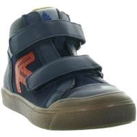 Chaussures Garçon Baskets montantes Acebo's 5568 Bleu