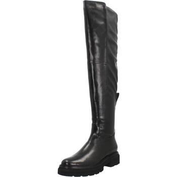 Chaussures Femme Cuissardes Bruno Premi BC0206 Noir