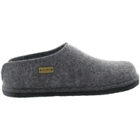 Chaussures Homme Chaussons Haflinger SMILY MEN Gris