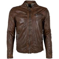 Vêtements Homme Vestes en cuir / synthétiques Gipsy 2.0 Veste motard en cuir homme Gipsy Ref 54000 noisette Marron