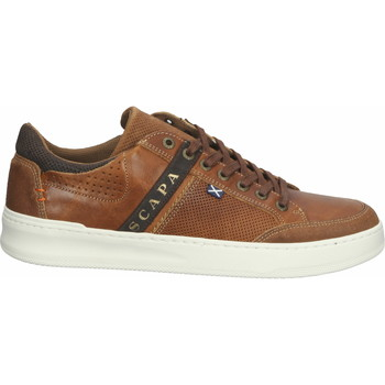 Chaussures Homme Baskets basses Scapa Sneaker Braun