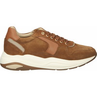 Chaussures Femme Baskets basses Scapa Sneaker Camel