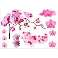 Maison & Déco Stickers Sud Trading Sticker nature Orchidée - 70 x 50 cm Rose