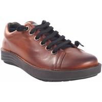Chaussures Femme Baskets basses Chacal Chaussure femme  5620 cuir Marron