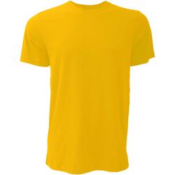 Vêtements Homme T-shirts manches courtes Bella + Canvas CA3001 Or