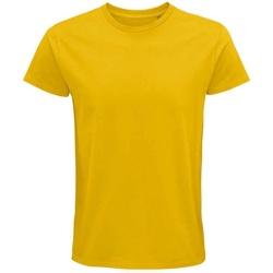 Vêtements T-shirts manches courtes Sols 03565 Doré