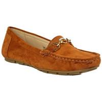 Chaussures Femme Mocassins Cink-me DM61 CAMEL
