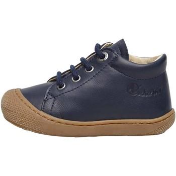 Chaussures Derbies Naturino COCOON-petites chaussures premiers pas en cuir nappa marine