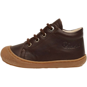 Chaussures Derbies Naturino COCOON-petites chaussures premiers pas en cuir nappa marron