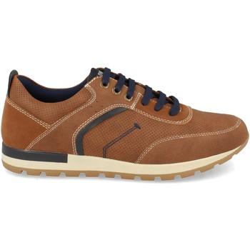Chaussures Homme Baskets basses Clowse 0E1109 Camel
