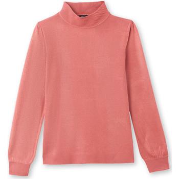 Vêtements Femme Pulls Balsamik Pull col montant très doux boisderose