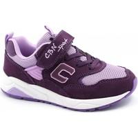 Chaussures Enfant Baskets basses Balocchi BAL-I21-818342-VI-b Viola