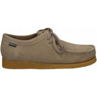 Chaussures Homme Derbies Sebago KOALA 905-beige-taupe