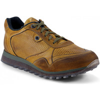Chaussures Homme Baskets mode Exton BASKETS  - 340 OCRE Multicolor