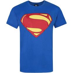 Vêtements Homme T-shirts manches courtes Dessins Animés  Bleu