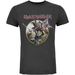 Vêtements Homme T-shirts manches courtes Amplified  Charbon