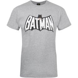 Vêtements Homme T-shirts manches courtes Dessins Animés  Gris