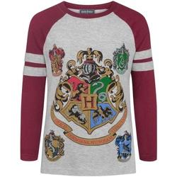 Vêtements Fille T-shirts manches longues Harry Potter  Gris