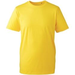 Vêtements Homme T-shirts manches courtes Anthem AM010 Jaune