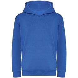 Vêtements Garçon Sweats Awdis JH201B Bleu roi