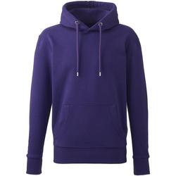Vêtements Homme Sweats Anthem AM01 Violet