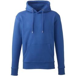 Vêtements Homme Sweats Anthem AM01 Bleu roi