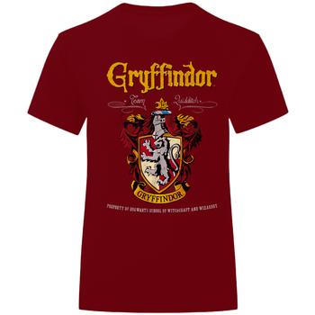 Vêtements T-shirts & Polos Harry Potter  Bordeaux