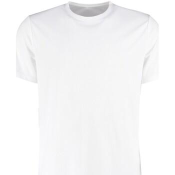 Vêtements Homme T-shirts manches courtes Kustom Kit KK555 Blanc