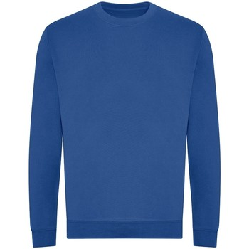 Vêtements Homme Sweats Awdis JH230 Bleu roi