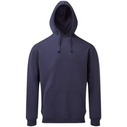 Vêtements Homme Sweats Asquith & Fox AQ045 Indigo