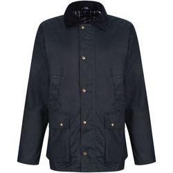 Vêtements Homme Vestes Regatta TRA410 Bleu marine