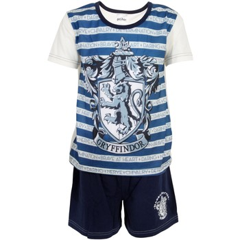 Vêtements Garçon Pyjamas / Chemises de nuit Harry Potter  Bleu / blanc