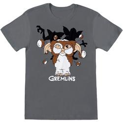 Vêtements Homme T-shirts manches courtes Gremlins  Gris foncé