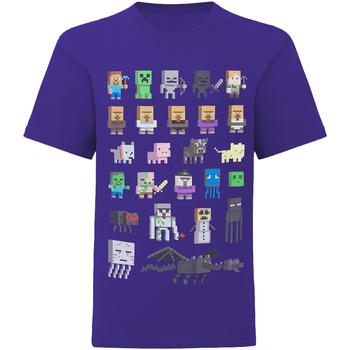 Vêtements Enfant T-shirts manches courtes Minecraft  Multicolore