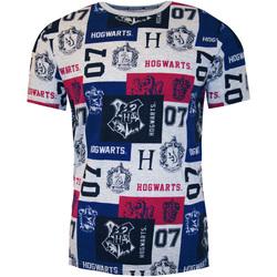 Vêtements Homme T-shirts manches courtes Harry Potter  Multicolore
