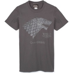 Vêtements Homme T-shirts manches courtes Game Of Thrones  Gris