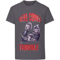 Vêtements Garçon T-shirts manches courtes Hotel Transylvania  Gris