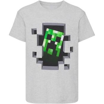 Vêtements Garçon T-shirts manches courtes Minecraft  Gris