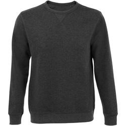 Vêtements Sweats Sols 02990 Gris foncé