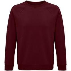 Vêtements Sweats Sols 03567 Bordeaux