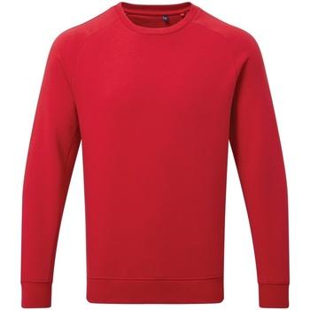 Vêtements Homme Sweats Asquith & Fox AQ078 Cerise