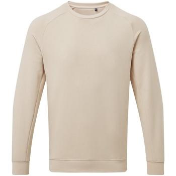 Vêtements Homme Sweats Asquith & Fox AQ078 Beige