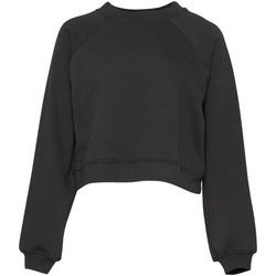 Vêtements Femme Sweats Bella + Canvas BE134 Gris foncé
