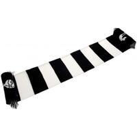 Accessoires textile Echarpes / Etoles / Foulards Tottenham Hotspur Fc  Bleu / blanc