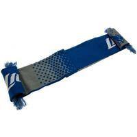 Accessoires textile Echarpes / Etoles / Foulards Detroit Lions  Bleu / gris
